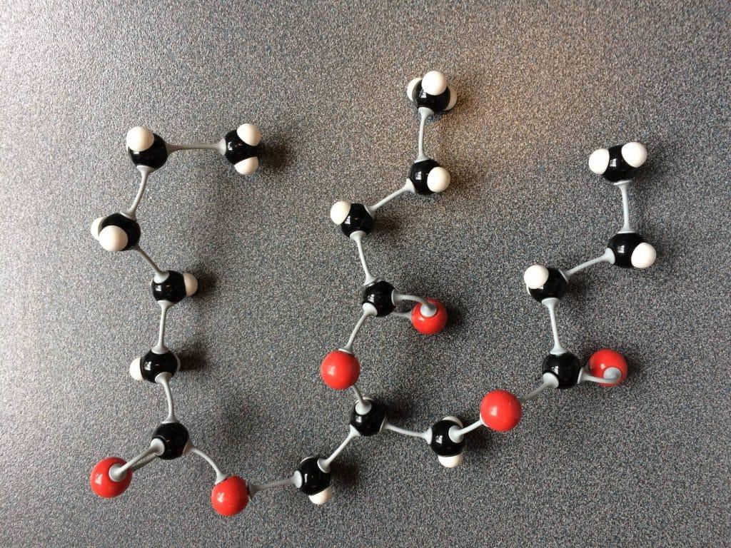 Fig. 25 Molekylmodel. Et fedtmolekyle består af et glycerolmolekyler og tre fedtsyrer.