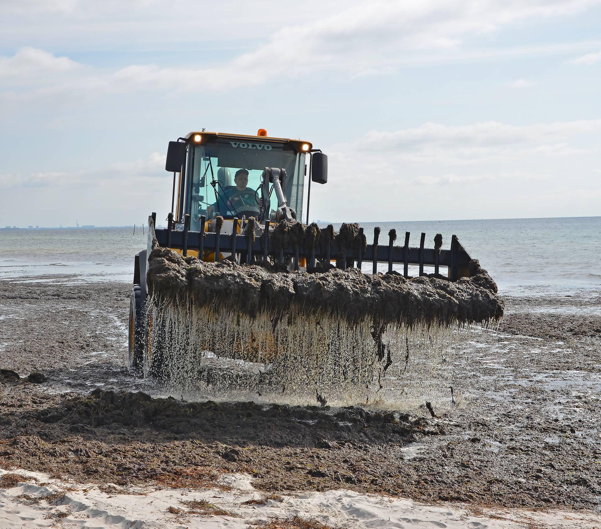 Traktor med tang, Solrød Biogas