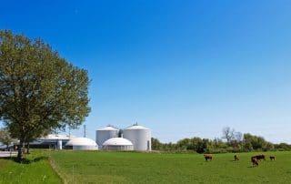 Solrød biogas_11